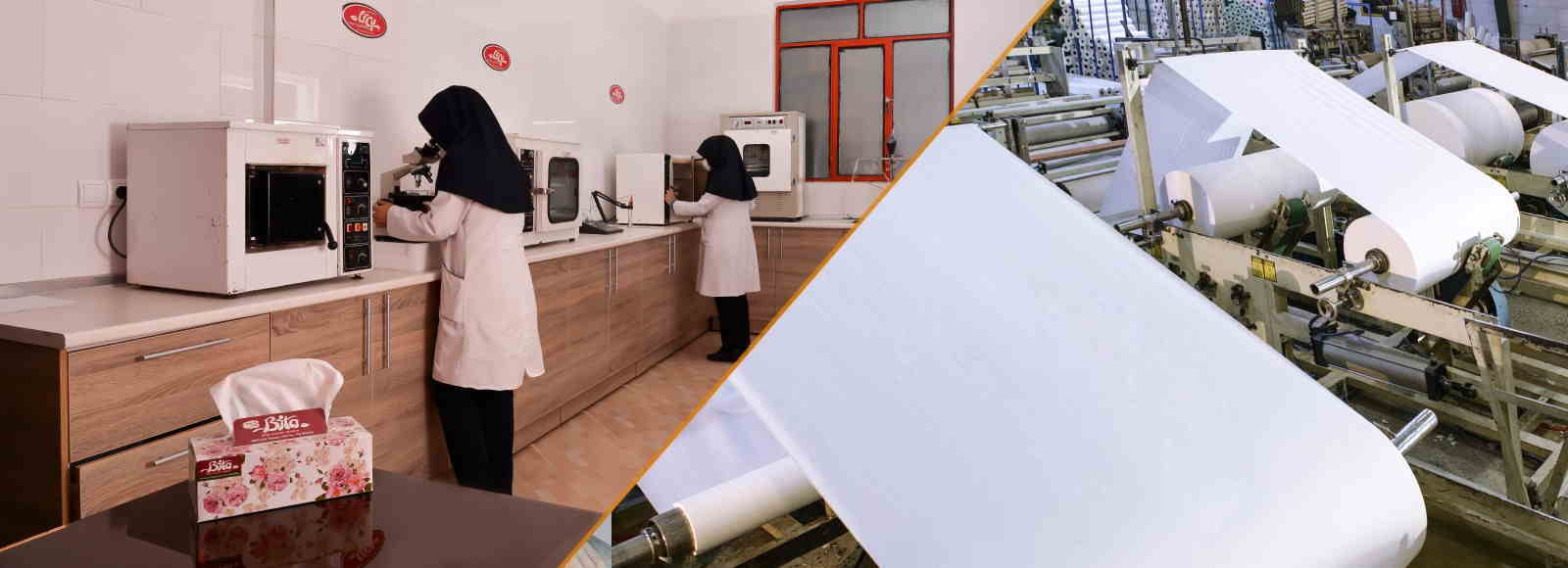 فروش عمده دستمال کاغذی بیتا