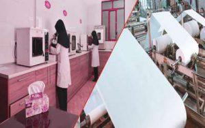شرکت دستمال کاغذی بیتا